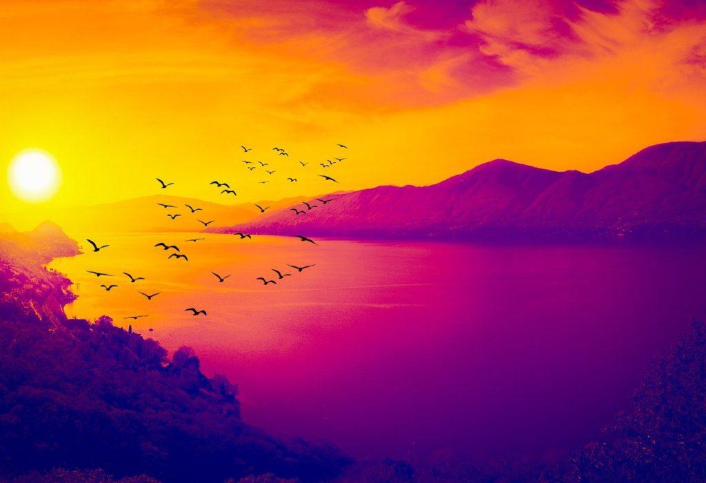 birds, sea, mountains
